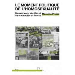 Le moment politique de l'homosexualité. Mouvements, identités et communautés en France