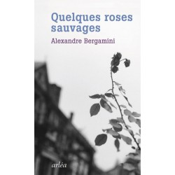Quelques roses sauvages