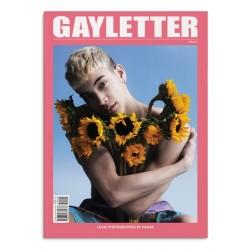 Gayletter n°2 (en anglais)
