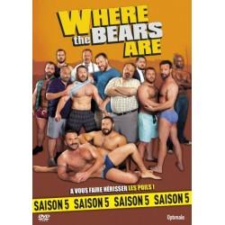 Where the bears are Saison 5