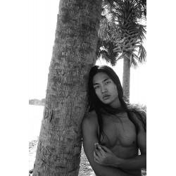 Men & Palm Trees