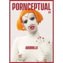 Pornceptual n°3 (en anglais)