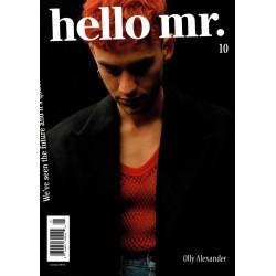 Hello Mr n°10 (en anglais)
